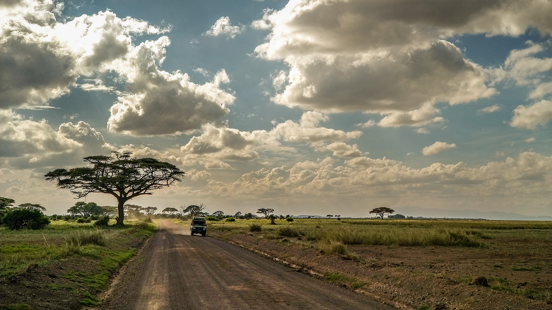 Safari w Kenii droga fotografia mobilna